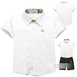 2013夏外貿 兒童全棉短袖襯衣男女童 純白polo襯衫白色