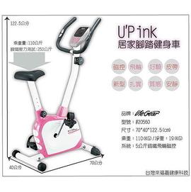 TIG 磁控健身車/健身/自行車/ 腳踏車/健身車/母親節/瘦身/減重/飛輪/美腿機/跑步機/  訓練台