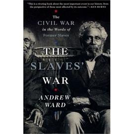 天下 書  Slaves War