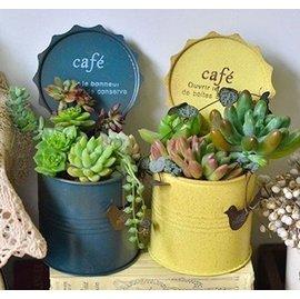 ~蘇菲亞精品傢飾~Zakka手工鐵藝咖啡罐頭小盆栽造景擺飾多肉植物