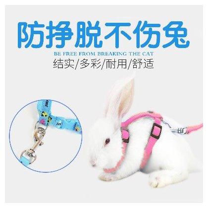 ~Little Catty~LF寵物兔背帶蹓兔繩兔牽繩兔拉繩溜兔工字帶H帶天竺鼠^(小^)