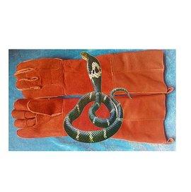 Q崽寵物 最 抓蛇手套 養殖取毒蛇鉗勾夾子防咬防抓 寵物動物水貂狗