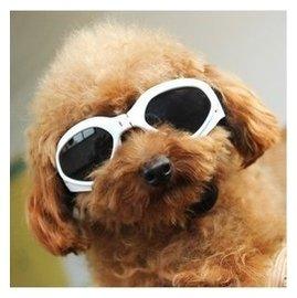 寵物眼鏡狗狗太陽鏡防護鏡 防風防雨眼鏡墨鏡 寵物飾品狗狗用品b