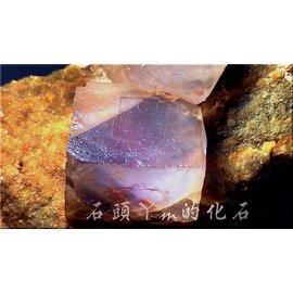 石頭ㄚm的化石 ~典藏晶品~ ^~碩大單晶立方晶體^~~粉色 螢石~