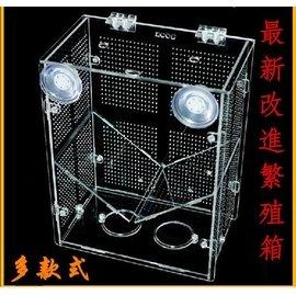 亞克力隔離盒 繁殖盒 孵化盒 漏鬥繁殖箱 孵化箱 孵化器