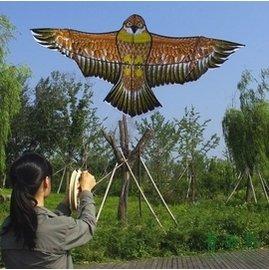 Y20 濰坊青雲鳥 風箏 大小金鷹風箏 1.9米 2.4米 超輕 易飛