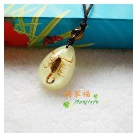 定制 琥珀項鏈男女蠍子標本人工琥珀吊墜 飾品昆蟲琥珀