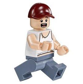 ~ComeAgain~ LEGO 樂高 76054 農夫 Farmer