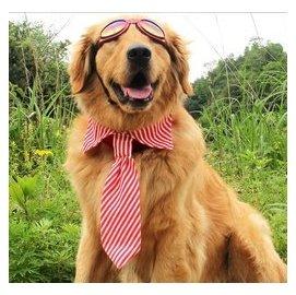~MN~^~MN 大甩賣^~寵物大狗領帶領結金毛薩摩牧羊犬喜樂蒂哈士奇邊牧拉布拉多柴犬