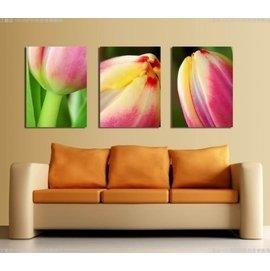 ~厚度1.5cm~客廳 簡約裝飾畫無框畫壁畫牆畫臥室室內居家~WKH~598~~50^~7