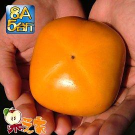 果之家 產地特選高山摩天嶺甜柿 5台斤^(8A,單顆7~8兩^)