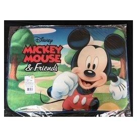 ~nike100m~Disney 迪士尼 ㊣版 米奇 米妮 史迪奇 踏墊 地墊 臥室 浴室
