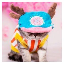 貓咪喬巴變身裝 貓衣服寵物衣服 小貓衣服 寵物服裝 保暖 包郵