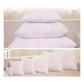 抱枕枕心 長型枕心 方形枕心 枕芯 各種尺寸 40~40 120~45 170~60