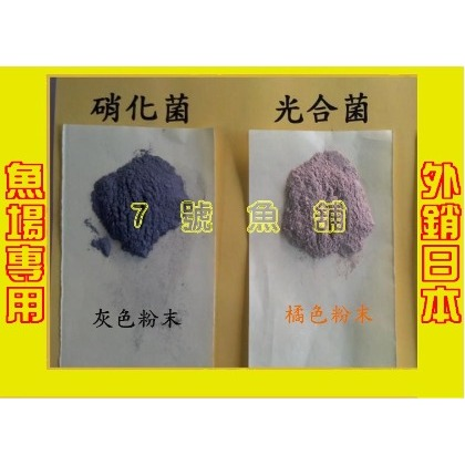 7號魚舖--網路最便宜-強效淨水活菌(硝化菌.光合菌)100g50元.1kg300元(消化菌)-滿千送贈品三選一(250元)
