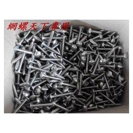 網螺天下~白鐵大扁鐵板牙螺絲 十字 ST 不鏽鋼 5 32^~1吋^(1  ^) 製,每支