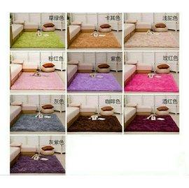 ~ 中~ 80^~160cm 絲毛地毯 坐墊 客廳 臥室 床邊 地毯 地墊 瑜珈地墊 遊戲