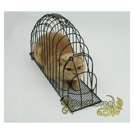 ∮貝多芬寵物∮第 雙門洗貓籠吹風打針用多 鐵籠洗貓袋