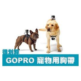 很划算  GOPRO 副廠 雙主機 HERO2 3 3 4 SJ4000 寵物 胸帶 胸