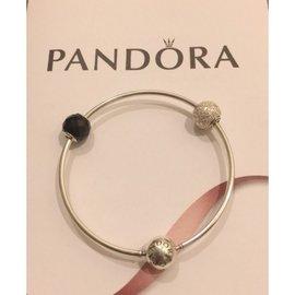 Pandora essence 16cm手環 Charms