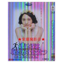 高清版 日劇《月薪嬌妻 逃避雖可恥但有用----新垣結衣 星野源》全新DVD (((滿600免運)))