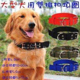翔仁寵物工坊~寵物精品百貨【大型犬用雙排扣項圈】獒犬/黃金/拉拉