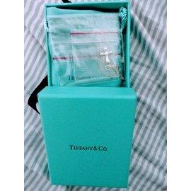Tiffany&Co項鍊