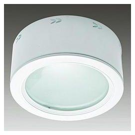 【築光坊】 E27 雙燈 橫插加玻璃吸頂筒燈薄型215x100mm 兩燈 二燈 LED燈泡球泡 螺旋燈樓梯陽台明裝筒燈