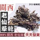 極鮮豆舖 Herbal ㊣ 100% 苗慄 關西 老仙草乾 三年以上 150 克包裝